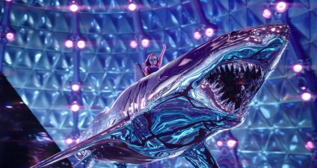 Os fãs estão furiosos porque Taylor Lautner não vai voltar para a sequência de Sharkboy e Lavagirl
