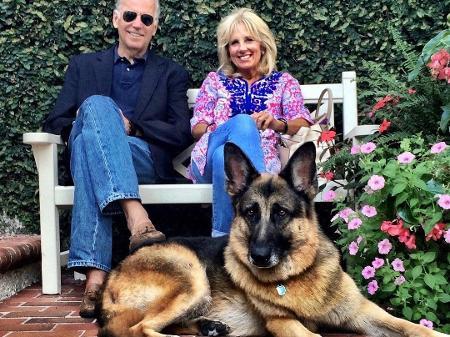 Eleições 2020 EUA: Com Joe Biden, Casa Branca volta a ter cachorros