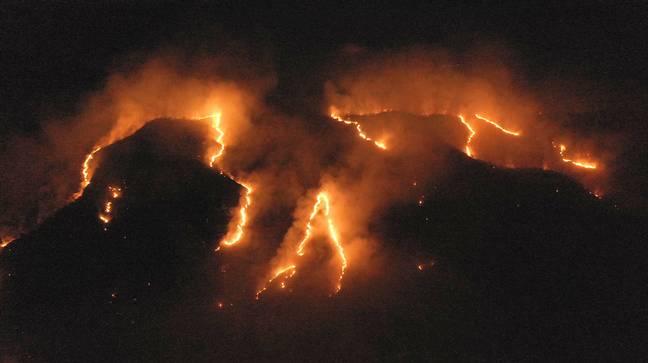 A floresta amazônica em chamas em 2019. Crédito: PA